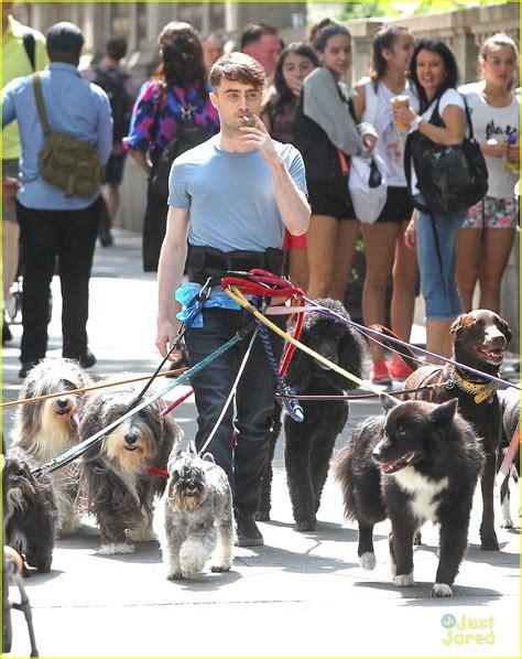 daniel radcliffe dogs sized photo of daniel radcliffe walker trainwreck nyc set 09 daniel