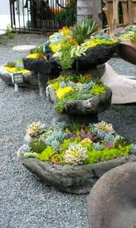 Succulent Rock Garden Succulent Rock Garden For The Home