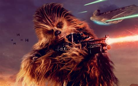 chewbacca solo  star wars story  wallpapers hd