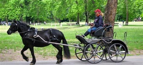 carrozze per cavalli in vendita quot carrozze e cavalli in cittadella quot rinviata al 18 settembre