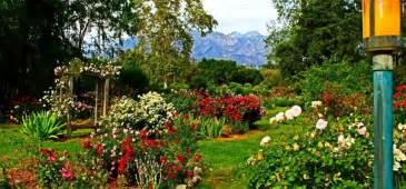 Flower Garden Los Angeles At Descanso Gardens La Insider Tours Los Angeles Tours La Insider Tours