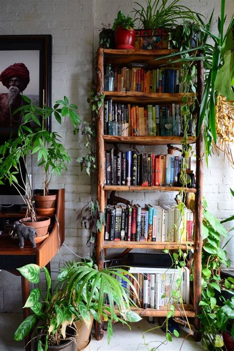 Apartment Living Room Plants Best 25 Apartment Ideas On Library