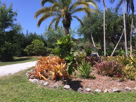 Palma Sola Botanical Gardens Palma Sola Brandenton S Botanical Gardens And Nature Preserves