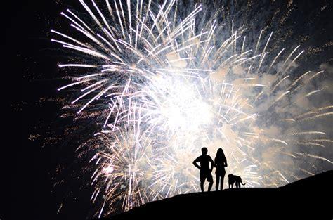 fireworks dogs dogwood lodge