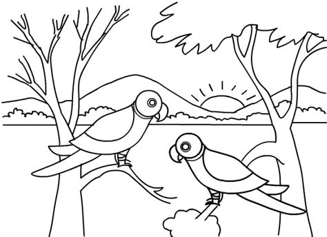 jungle coloring pages for toddlers 2o awesome jungle coloring pages