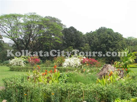 Botanical Garden Shibpur Botanical Gardens At Shibpur Kolkata Sightseeing Kolkata City Tours