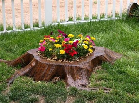 what to do with plant stump as christmas decoration outdoors tree stumps turned into beautiful flower planters barnorama