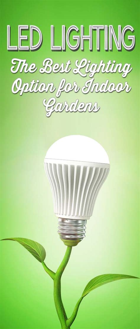 indoor lighting that mimics sunlight led grow lights the best choice for indoor plants gardens
