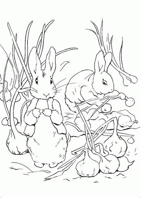 peter rabbit coloring pages coloringpagesabc com