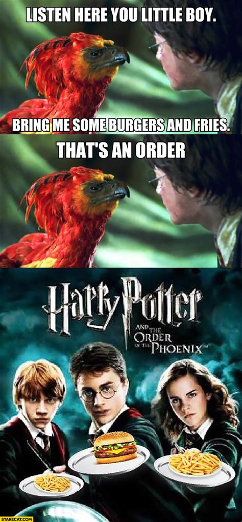 harry potter and the order of the pc product