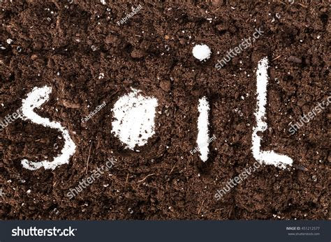 5 Letter Words Ground word soil made letters on ground stock photo 451212577