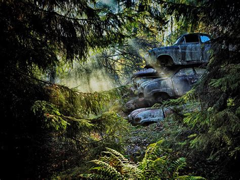 forest punk photographer hunts  abandoned vintage cars lost   woods feature shoot