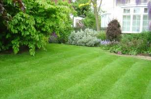 how to care for a lawn hirerush