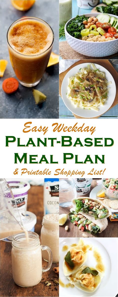 eat dairy free your essential cookbook for everyday meals snacks and books easy weekday plant based meal plan printable shopping list