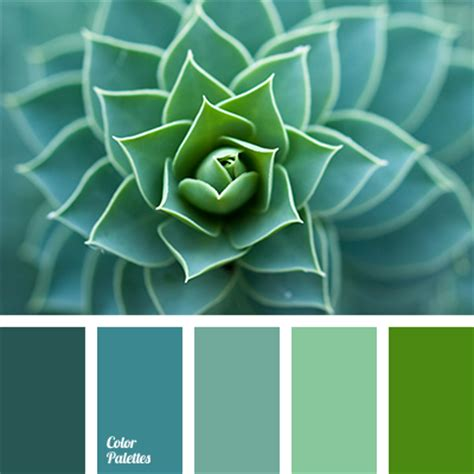 green color schemes color of aloe color palette ideas