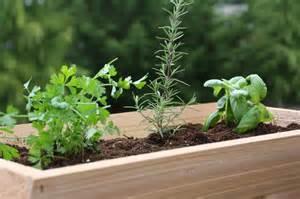 deck railing planter fits 4 or 6 inch railings 24 quot 7