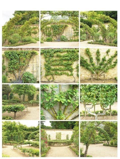 u cordon fruit trees espalier cottage in the oaks