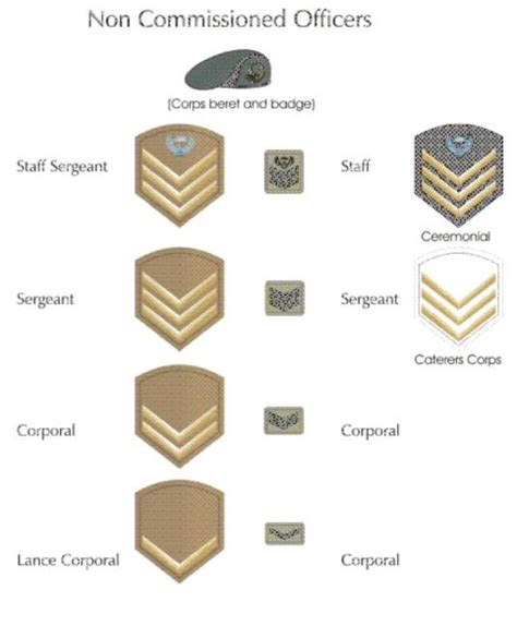 What Is A Non Commissioned Officer by Army Commissioned Ranks
