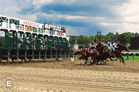 Saratoga Race Track Free Giveaways - download free software saratoga race track program neatmediaget