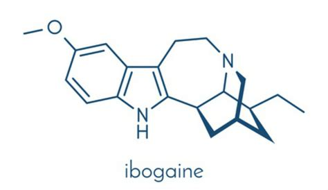 Ibogaine For Methadone Detox by Ibogaine A Holistic Approach To Treating Opiate Addiction