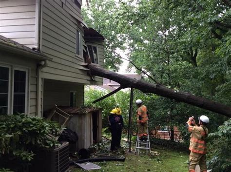 tree falls on house tree falls on house woman trapped montgomery community media