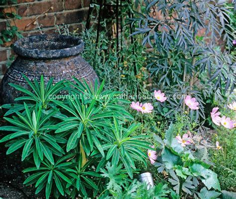 Blackheath Walled Garden Planting Garden Design London Walled Garden Error Code 5