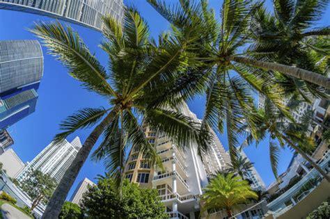 Miami Dade Search Family Miami Dade Housing Market Sets New Record