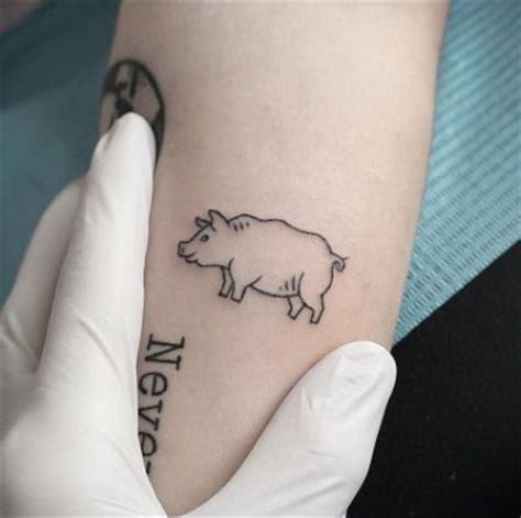 small pig tattoos 23 best stick and poke animal tattoos images on