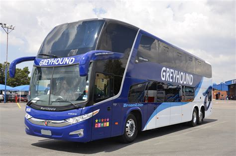 Greyhound Bus Comfort Greyhound Bus Bookings South Africa