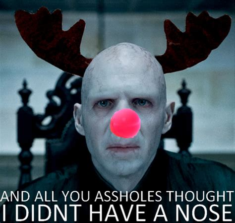 Harry Potter Christmas Meme - voldemort the red nose reindeer harry potter photo