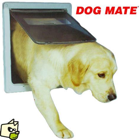 porte automatique pour chien porte battante mate pour grand chien