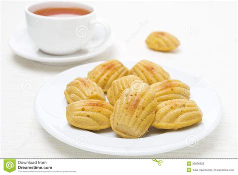 homemade madeleine cookies and a cup of tea royalty free