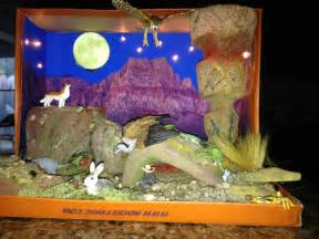 shoebox desert diorama made for 3rd grade project
