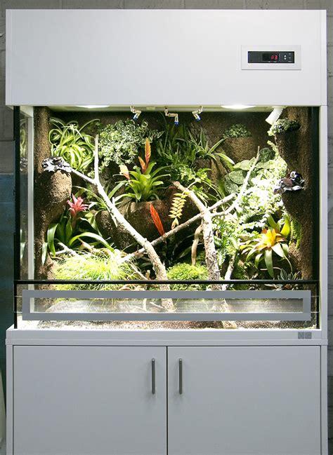 regenwaldterrarium fuer oophaga pumilio erdbeerfrosch