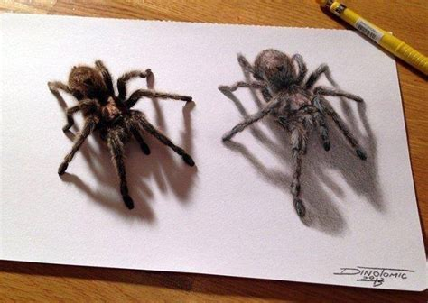 Spider 3d Drawing Illustrations Drawings Pinterest