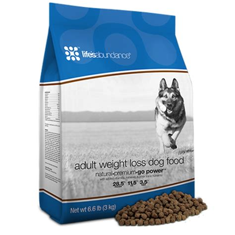 lifes abundance puppy food best food for overweight help best holistic food