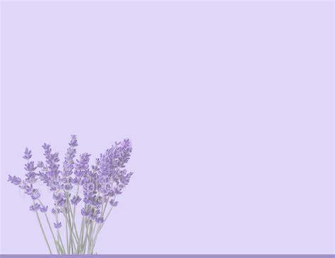 lilac background lilac background wallpaper wallpapersafari