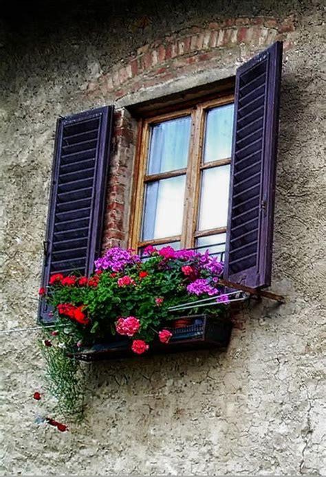 fioriere per davanzale finestra fioriere per davanzale finestra