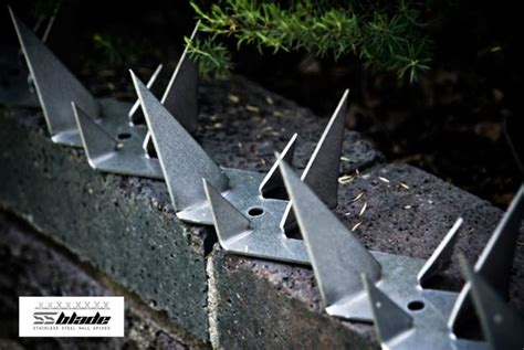 home fence security spikes ss blade on brick wall grezu