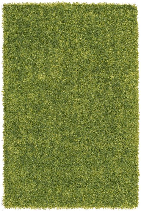 Bright Green Area Rug Dalyn Bg69 Lime Green Solid Vibrant Shag 4x6 Tufted Area Rug Approx 3 6 Quot X5 6 Quot Ebay