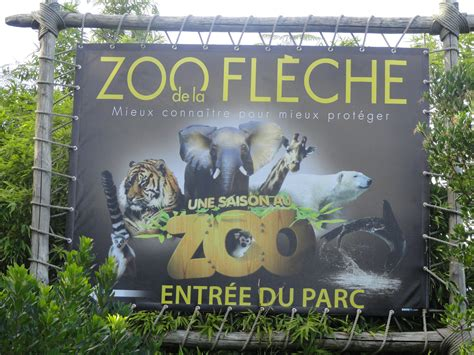 Zoo La Fleche Hebergement 3055 by Zoo La Fleche Hebergement Safari Lodge Zoo De La Fleche
