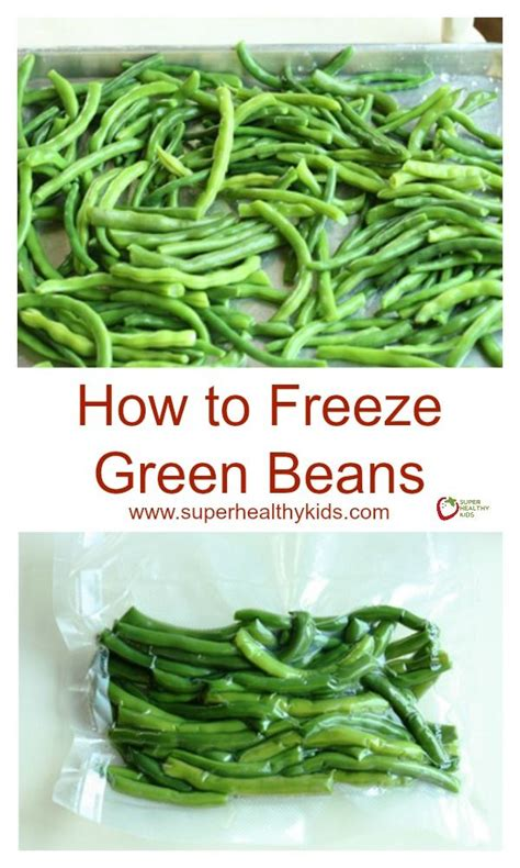 freezing green beans beans freezing green beans and
