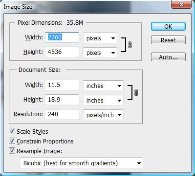 mug design size in photoshop understanding cropping versus resizing in photography