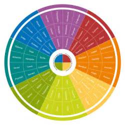 insights colors ignite business development insights deeper discovery
