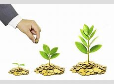 Fund selection must follow asset allocation, category ... Indian Technology Growth