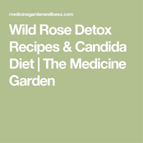 Candida Detox Diet Recipes by 25 Best Ideas About Detox On D Tox
