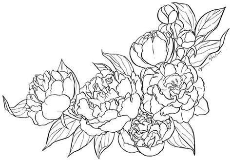 peony lineart by cyen on deviantart colouring pages