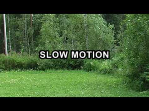 tutorial instagram slow motion smooth slow motion with virtualdub tutorial youtube