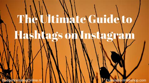 the ultimate instagram growth guide learn how to grow and make money of your instagram books budgetvertalingonline