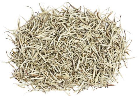 learn black tea green tea white tea herbal tea